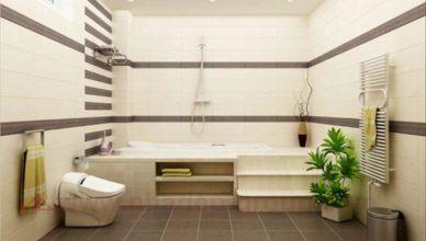 Hướng nhà vệ sinh